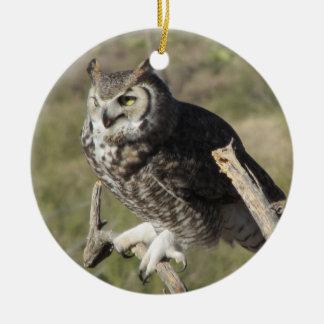 Grande ornamento da coruja Horned
