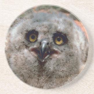 Grande Owlet Horned Porta Copos De Arenito