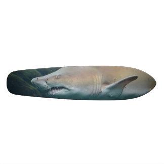 Grande tubarão branco assustador skate