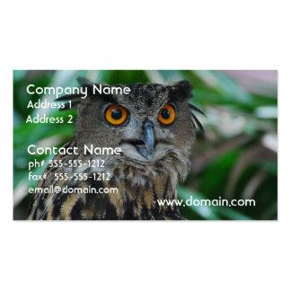 Grandes cartões de visitas da coruja