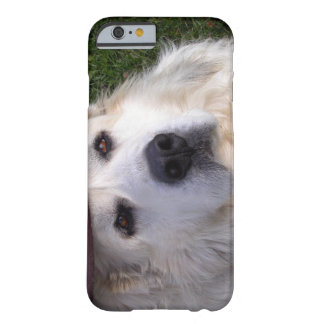 Grandes Pyrenees Capa Barely There Para iPhone 6