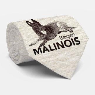 Gravata Belga Malinois - Mechelaar - Maligator