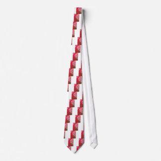 Gravata Camas de flor de tulipas vermelhas e cor-de-rosa