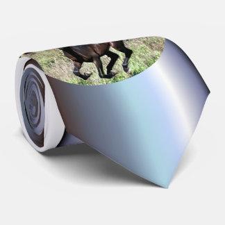Gravata Cavalo de galope da castanha