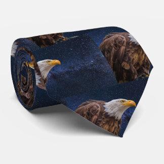 Gravata da águia americana