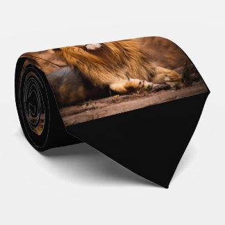 Gravata Design do impressão do teste padrão do leão