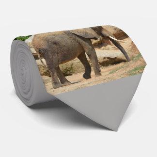 Gravata Elefante republicano