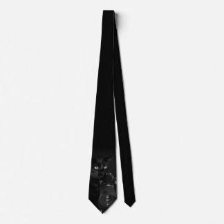 Gravata Gato preto engraçado com a câmera