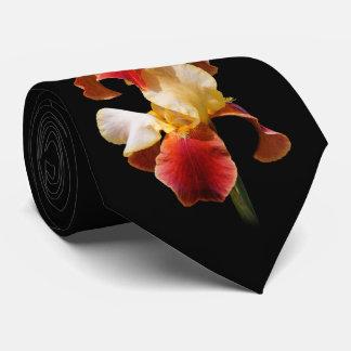 Gravata Íris farpada Multi-Colorida elegante Germanica