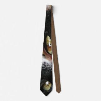 Gravata Laço dos olhos de gato