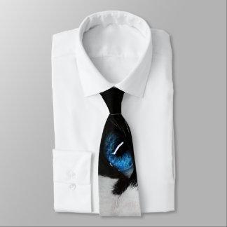 Gravata Laço Eyed azul do gato do smoking
