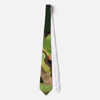 Gravata Laço verde do sapo de árvore