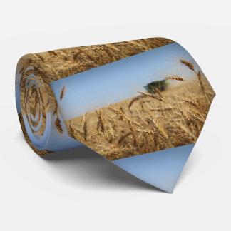 Gravata Liga no campo de trigo