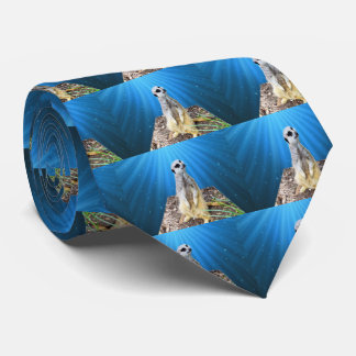 Gravata Noite azul de Meerkat, _