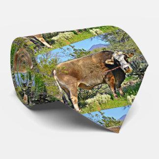 Gravata O laço novo de homens de vaca do rio