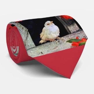 Gravata Pássaro RARO do pisco de peito vermelho do albino