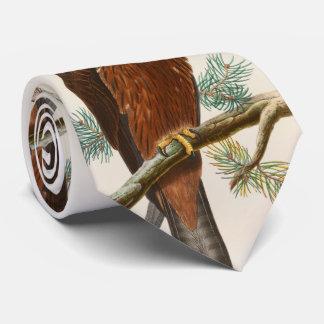 Gravata Pássaros de John Gould do falcão do papagaio preto