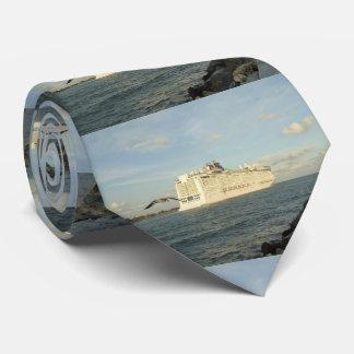 Gravata Perseguição épico - a gaivota segue o navio de