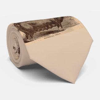 Gravata Raça do século XIX da porca de Berkshire do