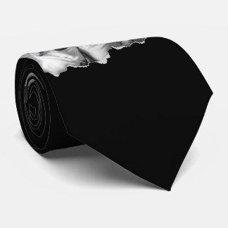 Gravata Rasgado para fora duas fotos de família feitas sob