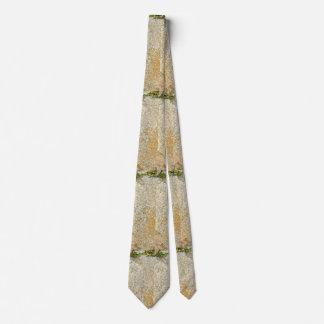 Gravata Rocha murada