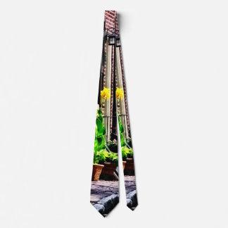 Gravata Rua do Pa de Philadelphfia com potes de flor