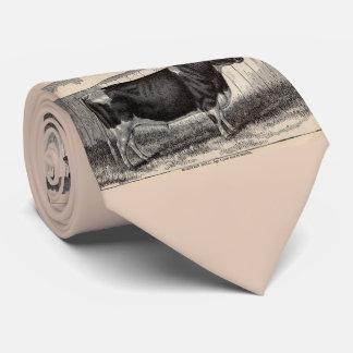 Gravata Touro do século XIX de Holstein do impressão