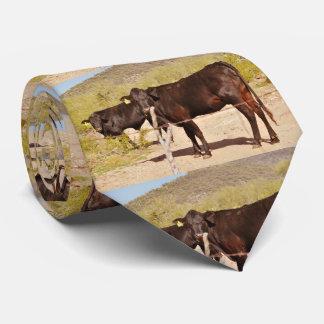 Gravata Vacas de Brown no laço do cromo