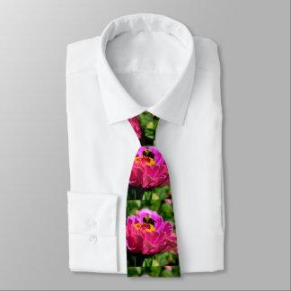 Gravata Zinnia cor-de-rosa com zangão