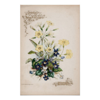 Gravuras botânicas março pôsteres