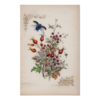 Gravuras botânicas novembro impressão