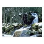 Great Smoky Mountains, NC Cartão Postal