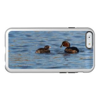Grebe pequeno e pintinho capa incipio feather® shine para iPhone 6
