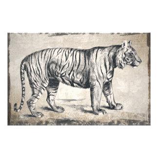 Grunge dos animais selvagens do vintage do tigre papelaria