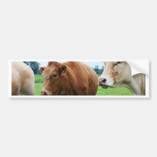Grupo de vacas adesivo para carro