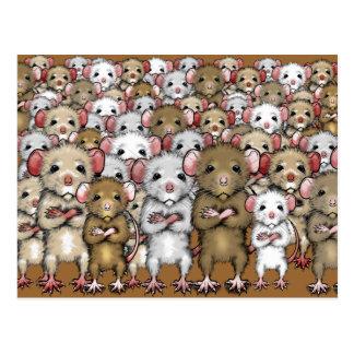 Grupo do grupo do cartão dos ratos
