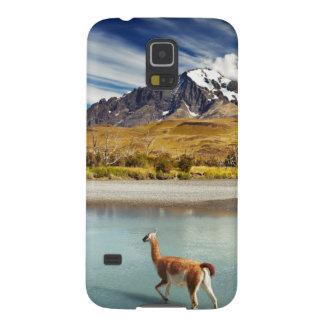 Guanaco que cruza o rio em Torres del Paine Capinha Galaxy S5