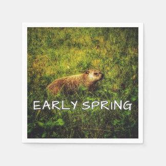 Guardanapo adiantados do primavera