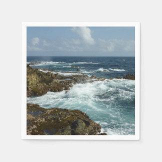Guardanapo De Papel A costa rochosa e o oceano azul de Aruba