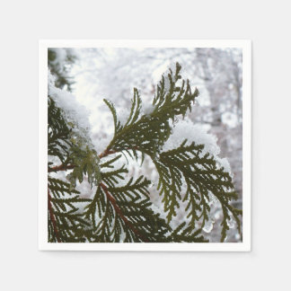 Guardanapo De Papel A neve no Evergreen ramifica foto da natureza do