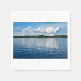 Guardanapo De Papel Arquipélago na costa de mar Báltico na suecia