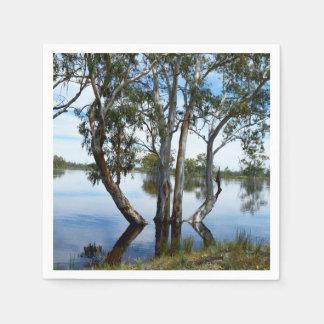 Guardanapo De Papel Beleza de uma árvore de goma,