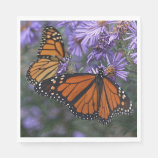 Guardanapo De Papel Borboleta de monarca