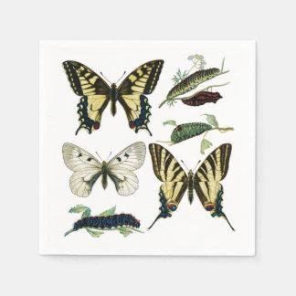 Guardanapo De Papel Borboletas, lagartas e traça de Swallowtail
