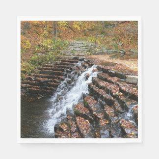 Guardanapo De Papel Cachoeira no parque estadual II do monte do louro