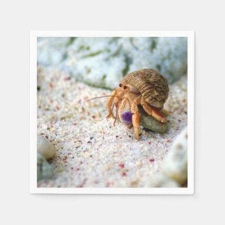 Guardanapo De Papel Caranguejo da areia, Curaçau, ilhas das Caraíbas,