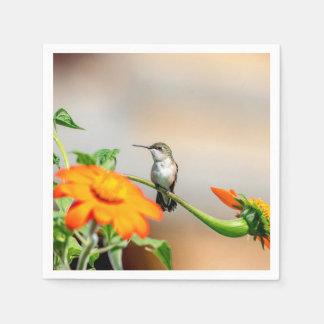 Guardanapo De Papel Colibri em uma planta de florescência