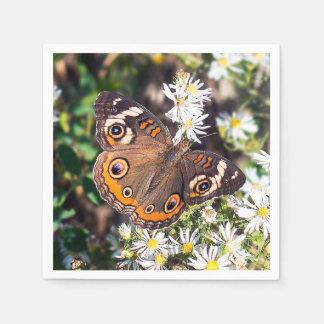 Guardanapo de papel da borboleta do Buckeye