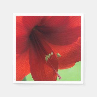 Guardanapo de papel da flor vermelha do Amaryllis