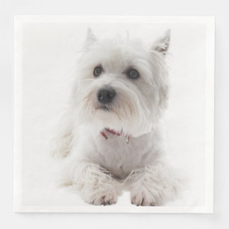 Guardanapo De Papel De Jantar Montanhas ocidentais brancas adoráveis Terrier